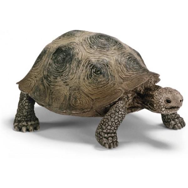 reuzenschildpad - schleich diertje