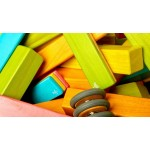 Tegu magnetische blokken: klasset
