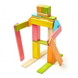 Tegu magnetische blokken: set van 24 tints